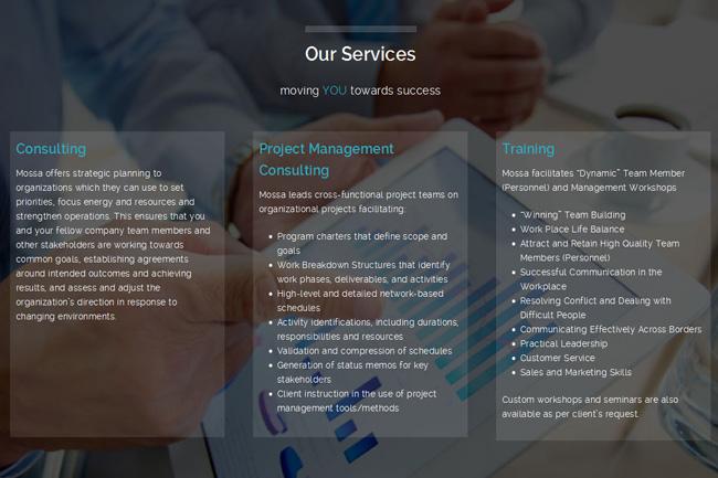 Neue Unternehmensberatung Webseite (Web-Design Portfolio)