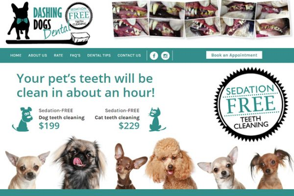 New Website for Dog Teeth Cleaning – Webdesign Portfolio